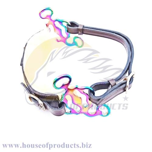 Rainbow multi colors Baroque hackamore